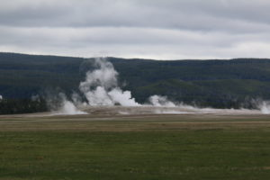 Steam from one of the many hot poos in Yellowstone rises up off the plain.