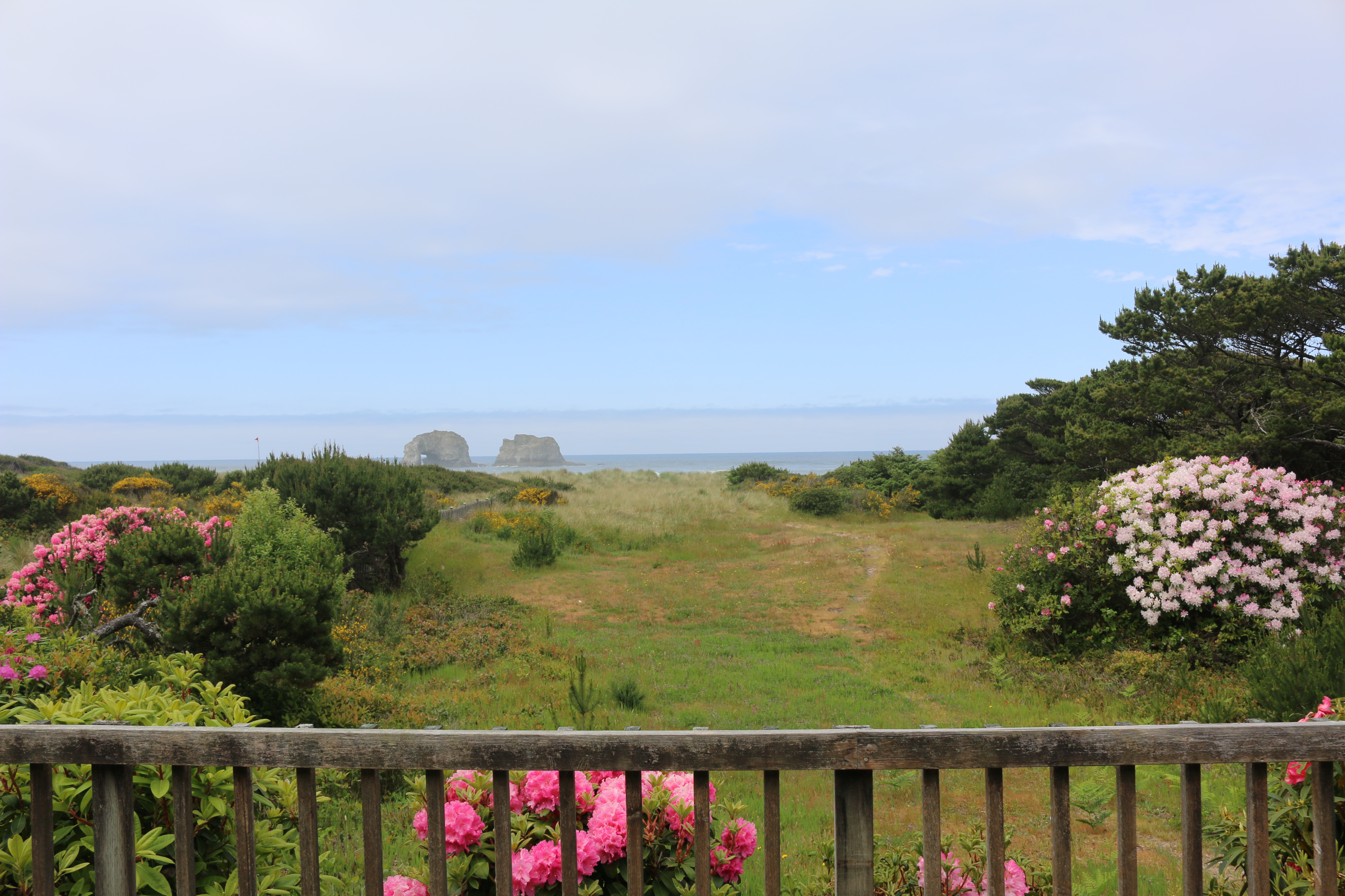 two large rocks in the ocean, a grassy and flowery garden, and a porch rail